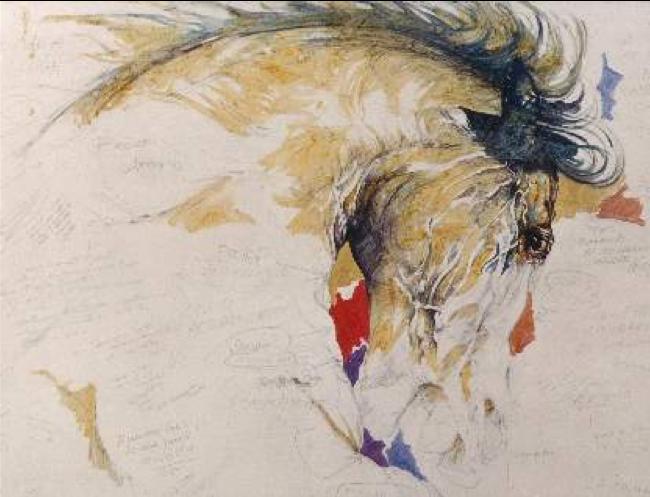 Lorenzo d'Arpe Medico Veterinario è esperto di laminite nel cavallo, navicolite e in tutte le patologie del piede del cavallo. Come evitare un cavallo zoppo e prevenire la zoppia cavallo curando l'unghia