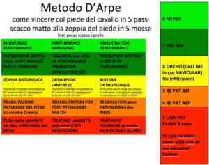 Metodo D'Arpe: Lorenzo d'Arpe Medico Veterinario è esperto di laminite nel cavallo, navicolite e in tutte le patologie del piede del cavallo. Come evitare un cavallo zoppo