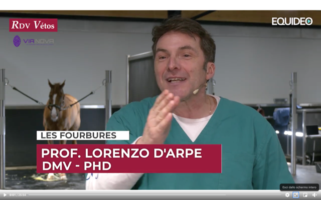 Il Dr Lorenzo D'Arpe in diretta con RDV Vetos sul canale TV Equideo
